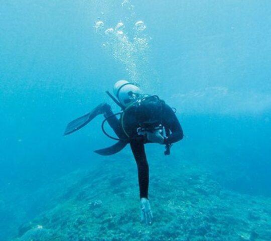 Diving in Saida