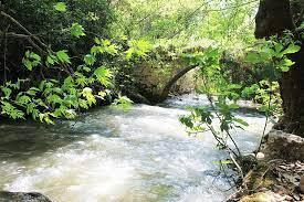 Kenayet Riverside Public Park